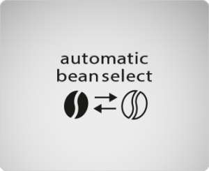 03-automatic-bean-select